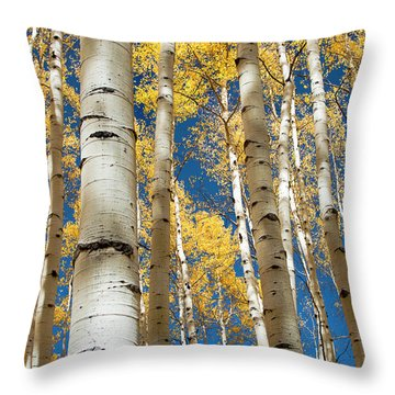 Stately Aspens Throw Pillow