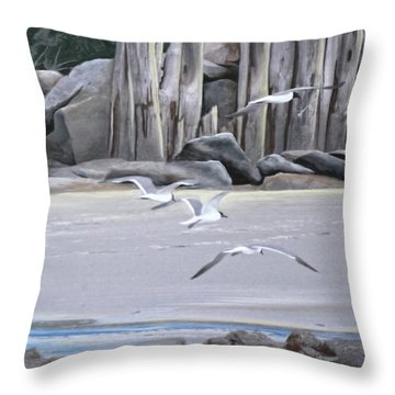 Statio 12 Throw Pillow
