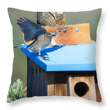 Stay Away Throw Pillow by Mike Dawson