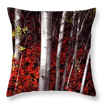 Stealing Beauty Throw Pillow