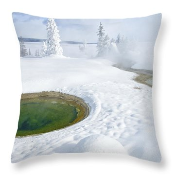 Steam And Snow Throw Pillow by Gary Lengyel