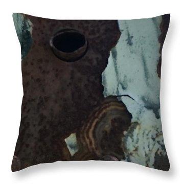 Rusted Away Throw Pillow