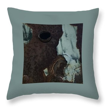 Rusted Away Throw Pillow