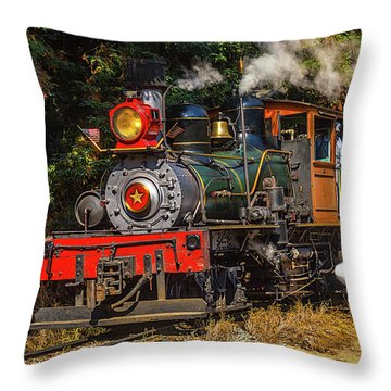 Number One Throw Pillows