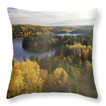 Steamy Forest Throw Pillow