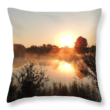 Steamy Morning Throw Pillow by Teresa Schomig