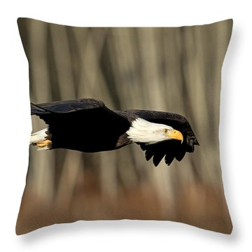 Steath Throw Pillow