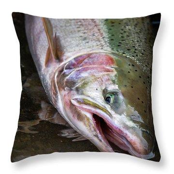 Steelhead 1 Throw Pillow