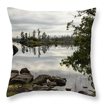 Throw Pillow featuring the photograph Steely Day by Larry Ricker
