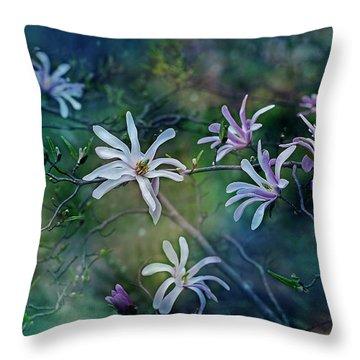Stellata Series 2/2 Throw Pillow