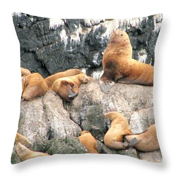 Steller Bull With Harem Throw Pillow