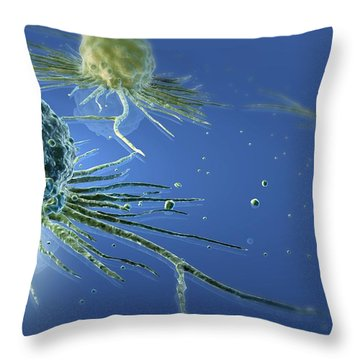 Stem Cells Throw Pillow by Three D Four Medical and Photo Researchers