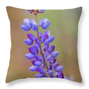 Throw Pillow featuring the photograph Stem Of Lupines by Ram Vasudev