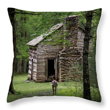 Throw Pillow featuring the photograph Step Back In Time by Andrea Silies