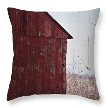 Throw Pillow featuring the photograph Step Back In Time- Fine Art by KayeCee Spain