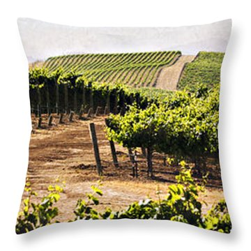 Step Into My Vineyard Throw Pillow by Marilyn Hunt