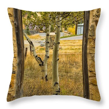 Step Through Throw Pillow