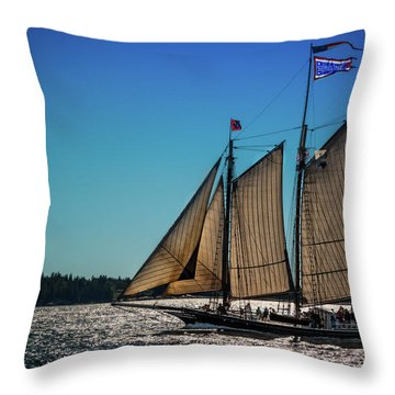 Stephen Taber Throw Pillow by Fred LeBlanc