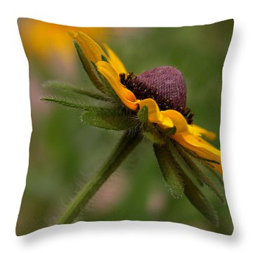Throw Pillow featuring the photograph Steppin Out by Tammy Espino