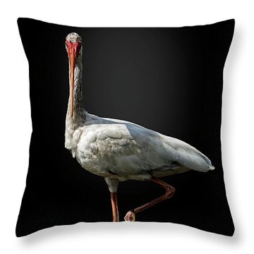 Stepping Out Throw Pillow by Cyndy Doty