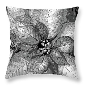 Sterling Shimmer Throw Pillow by DigiArt Diaries by Vicky B Fuller