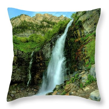 Stewart Falls Throw Pillow