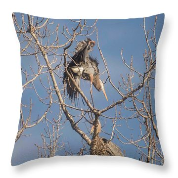 Throw Pillow featuring the photograph Stick Acceptance by David Bearden