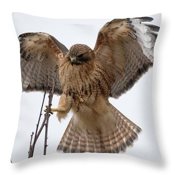 Stick The Landing Throw Pillow
