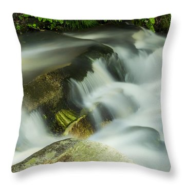Stickney Brook Flowing Throw Pillow by Tom Singleton
