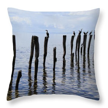 Throw Pillow featuring the photograph Sticks Out To Sea by Stephen Mitchell