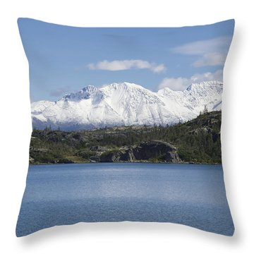 Stikine Mountains 7 Throw Pillow