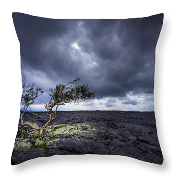 Throw Pillow featuring the photograph Still Fighting by Dan Mihai