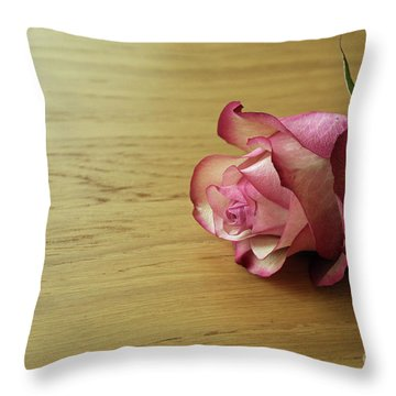 Still Life, Macro Photo Of Pink Rose Flower Throw Pillow by Pixelshoot Photography
