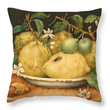 Still Life With A Bowl Of Citrons Throw Pillow by Giovanna Garzoni