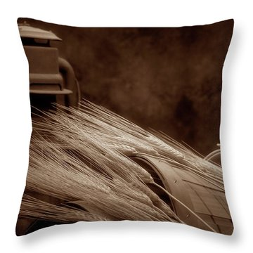 Still Life With Wheat I Throw Pillow by Tom Mc Nemar