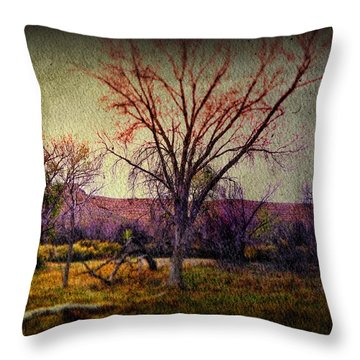 Throw Pillow featuring the photograph Still by Mark Ross