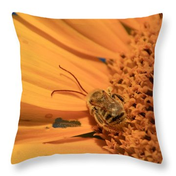 Throw Pillow featuring the photograph Still Sleeping by Chris Berry