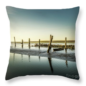 Throw Pillow featuring the photograph Still Standing by Hannes Cmarits
