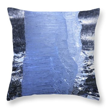 Throw Pillow featuring the photograph Still Standing by Sami Tiainen