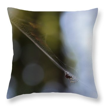 Throw Pillow featuring the photograph Still Vibration by Rhys Arithson