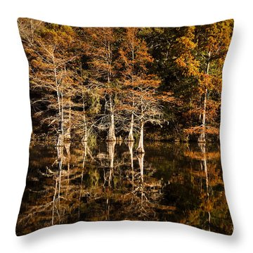 Throw Pillow featuring the photograph Still Waters On Beaver's Bend by Tamyra Ayles