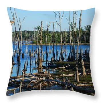 Still Wood - Manasquan Reservoir Throw Pillow