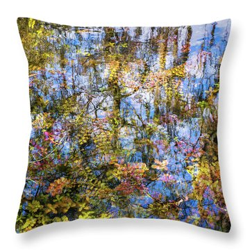 Stillness Holds Everything Throw Pillow