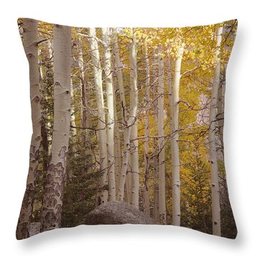 Stillness Throw Pillow by The Forests Edge Photography - Diane Sandoval