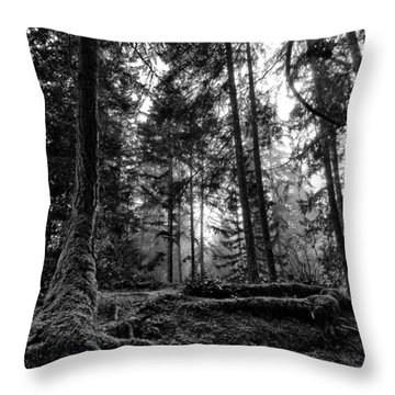 Stillpoint Throw Pillow