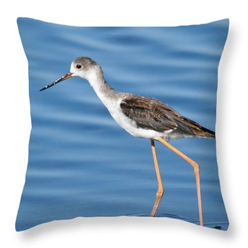 Throw Pillow featuring the photograph Stilt by Richard Patmore