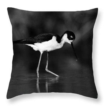 Throw Pillow featuring the photograph Stilt Waterdrops by John F Tsumas