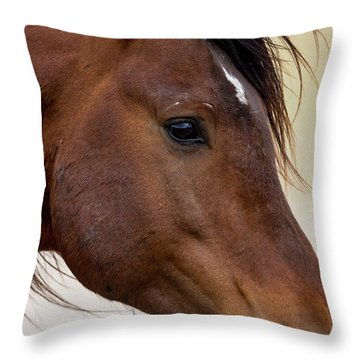 Eye To The Soul Throw Pillow