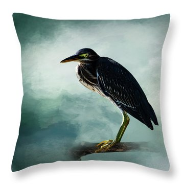 Stink Eye Throw Pillow by Cyndy Doty