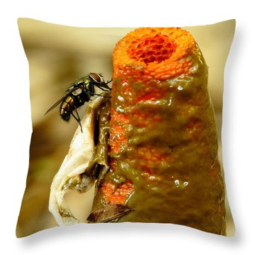 Tip Of Stinkhorn Mushroom With Fly Throw Pillow